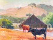 Life On The Farm, Nicasio